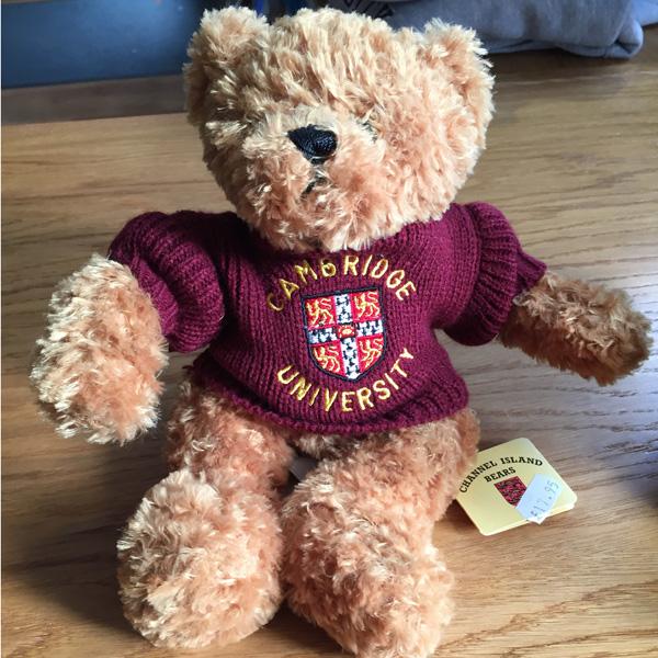 Teddy Bear - Maroon Jumper