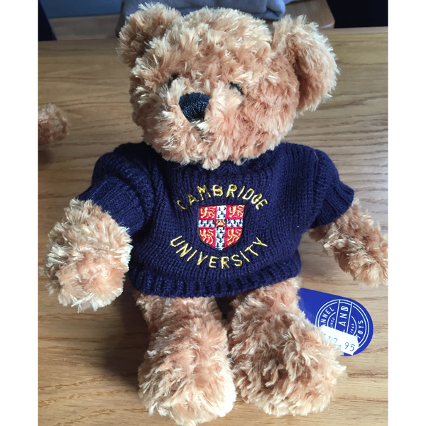 Teddy Bear - Navy Jumper